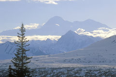 View of Mt. McKinley and Mt. Denali from George Park Highway, Route 3, Alaska Royalty Free Stock Images