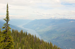 View from Mt Revelstoke Stock Image