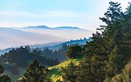 View from Mt. Tamalpais at sunset stock photos