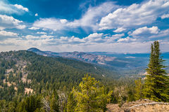 View from Mt. Washburn in Yellowstone National Park Stock Images
