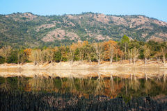 View of Muga lake  in autumn. Catalonia. Spain Stock Images