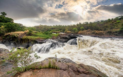 View of Murchison Falls on the Victoria Nile river National Park Stock Photos