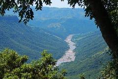 Foliage with oribi gorge in background. View of Mzimkhulu river cutting through Oribi Gorge canyon in Kwazulu Natal Stock Photography