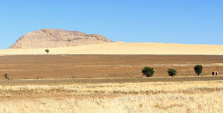 View Namib-Naukluft National Park landscape in Namibia Royalty Free Stock Photo