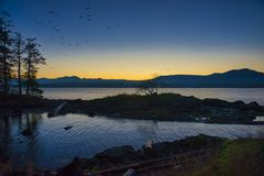 View of Nanaimo bay and skyline at dusk, taken from Jack Point. And Biggs Park in Nanaimo, British Columbia royalty free stock photo