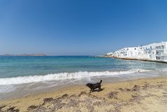 Naoussa village and beach - Aegean Sea - Paros Cyclades island - Greece. View of Naoussa village and beach - Aegean Sea - Paros Cyclades island - Greece stock photography