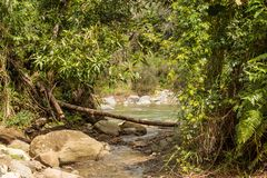 View on national park alejandro de humboldt with river Cuba royalty free stock photography