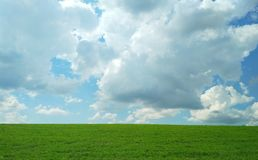 Green field in spring on a warm cloudy day royalty free stock photo