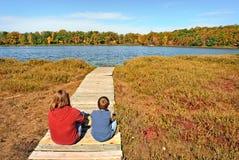 View of Natural Bog Royalty Free Stock Photo