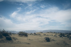 A view of the Natural Reserve of Dunes of Maspalomas, in Gran Canaria, Canary Islands, Spain Royalty Free Stock Photo