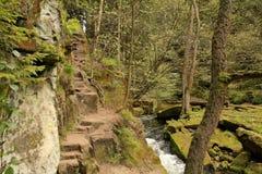View of nature in Bohemian Switzerland. Jetrichovice- Czech Republic Stock Image