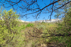 View of the nature and mountains of the south of the Crimea. Nature and mountains of the south of the Crimea royalty free stock photo