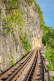 View of nature and Railroad tracks Royalty Free Stock Photos