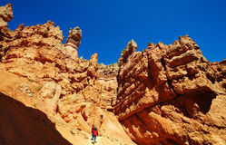 A  view from navajo trail Stock Photography