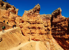 A view from navajo trail Royalty Free Stock Images