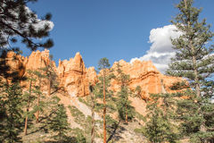 View from Navajo Trail in Bryce Canyon National Park, UT Royalty Free Stock Photos