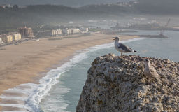 View of Nazare, Portugal stock image
