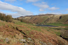 View NE to Watendlath Tarn and High Seat, Cumbria Royalty Free Stock Images