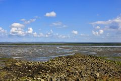 Mud Flats Royalty Free Stock Photos