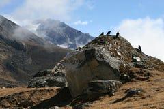 View near Dzonglha. Dzonglha (4830 m) - the village in the Himalayas. Nepal 2008 Royalty Free Stock Photo
