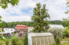 A view of neighbourhood with pretty houses. And greenery all around Royalty Free Stock Photography