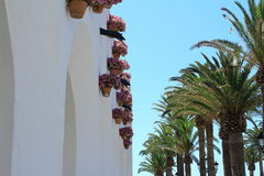 View of Nerja with palms and flowers. Royalty Free Stock Photography