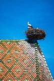 View of a nest with storks, symbol of the historic town of Colmar, also known as Little Venice, Colmar, Alsace. View of a nest with storks, symbol of the stock photos