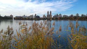 A View from New York's Central Park Stock Photo