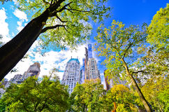 View of New York skyline from Central Park Royalty Free Stock Images