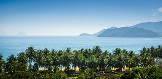 A view of nha trang bay. A view of palm trees at nha trang bay with pearl island resort in the background royalty free stock image