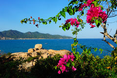 A view of nha trang bay Royalty Free Stock Images