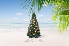 New year tropic Stock Photos