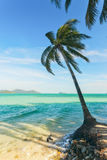 View of nice tropical beach with some palms around. Koh Laoya Sea of Thailand Royalty Free Stock Images