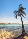 View of nice tropical beach with some palms around. Koh Laoya Sea of Thailand Royalty Free Stock Photos