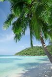 View of nice tropical beach with some palms Royalty Free Stock Photo