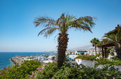View of nice tropical shore with palms around. Royalty Free Stock Photos