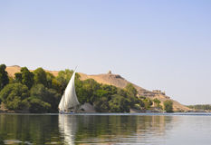 View of the Nile with a traditional felluca boat Stock Images