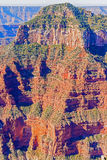 View From The North Rim Of The Grand Canyon Stock Images