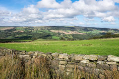 View in the North York Moors Royalty Free Stock Photo