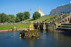 View not working Samson fountain July evening. A large fountain cascade of Peterhof. Saint Petersburg Stock Images