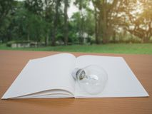 View of notebook and light bulb on wooden table with green tree background stock image