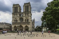 Notre Dame of Paris, France, pigeons in the square stock photo