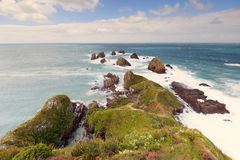 A view from Nugget Point Lighthouse observation platform. Royalty Free Stock Images