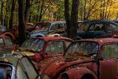 Vintage VW Beetle - Volkswagen Type I - Pennsylvania Junkyard stock images