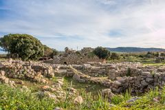 A view of nuragic complex of Palmavera. A view of nuragic village of Palmavera in north-west Sardinia Royalty Free Stock Photography