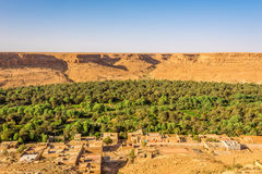 View at the oasis palmetto in mountains of Morocco Stock Image