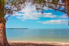 View of the ocean from the bay under the tree crowns Royalty Free Stock Images