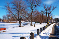 View Of A Park In Winter Royalty Free Stock Photography