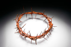 Free View Of Branches Of Thorns Stock Photography - 52342402