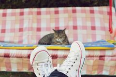 Free View Of Legs And A Cat On Swing Royalty Free Stock Photo - 52453185